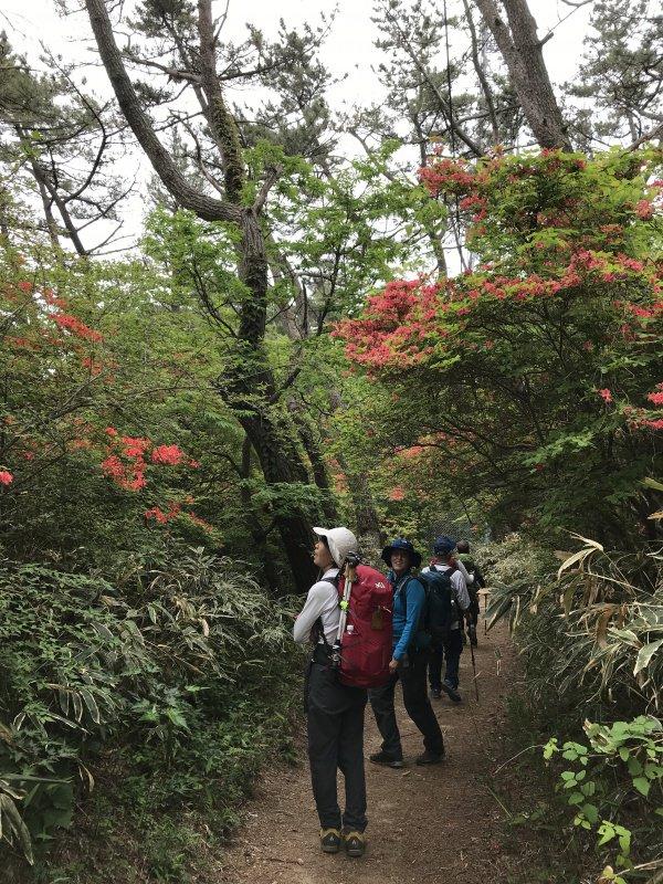 神戸中央山の会例会風景
